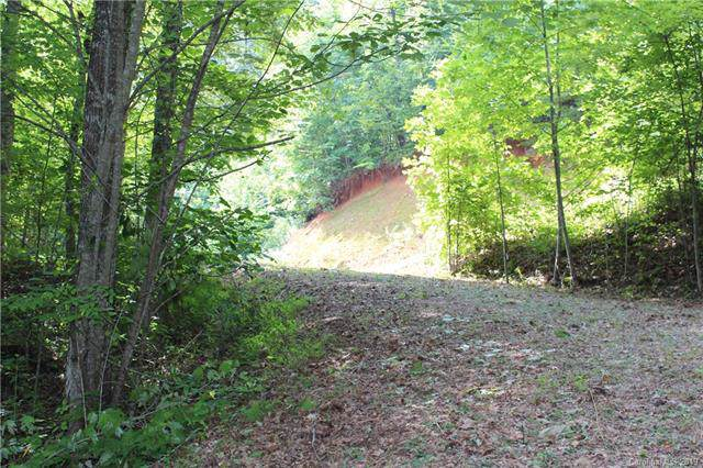 Lot 10 Freeman Overlook #10, Bryson City, NC 28713 (#3537742) :: Zanthia Hastings Team