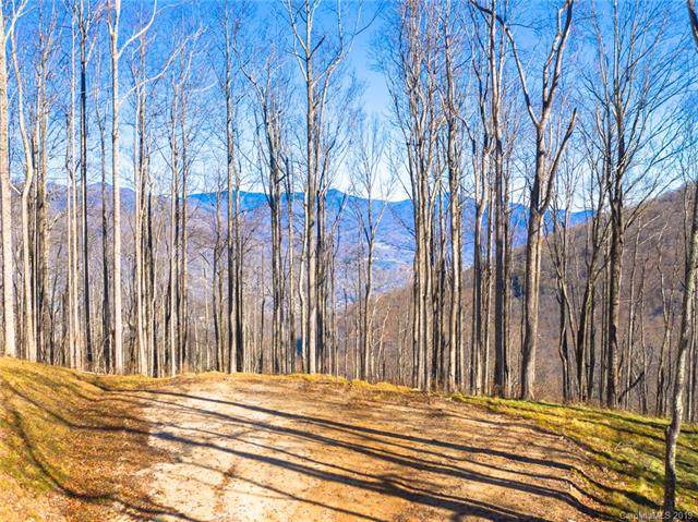 1353 Daydream Ridge #57, Swannanoa, NC 28778 (#3542596) :: Keller Williams Professionals