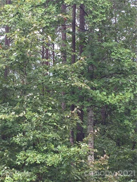 TBD Mountain Creek Road, Rutherfordton, NC 28139 (#3542644) :: LePage Johnson Realty Group, LLC