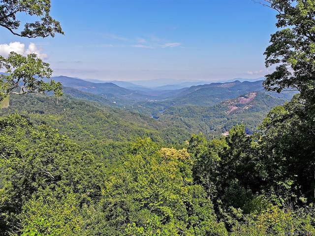 544 Parkside Drive, Tuckasegee, NC 28783 (#3546974) :: LePage Johnson Realty Group, LLC