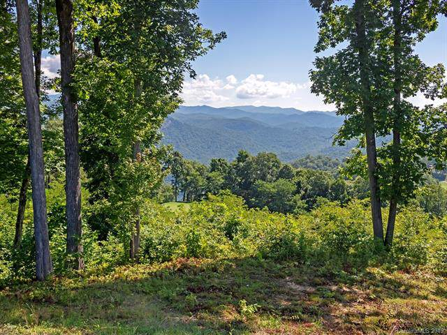 539 Parkside Drive, Tuckasegee, NC 28783 (#3547346) :: Charlotte Home Experts