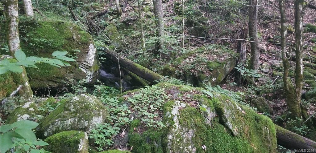 000 Mountain Brook Road - Photo 1