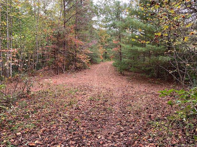 Lot #6 & #7 Briggs Cove Road 6/7, Robbinsville, NC 28771 (#3555400) :: Roby Realty