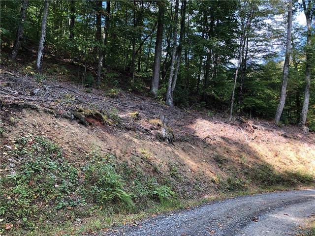 00 Left Fork Run Road, Bakersville, NC 28705 (#3555919) :: Francis Real Estate