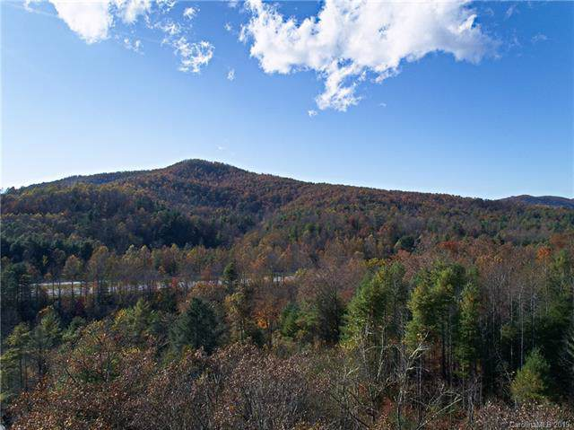 00 Terrys Creek Road, Zirconia, NC 28790 (#3561716) :: Stephen Cooley Real Estate Group