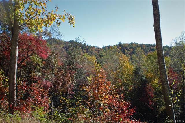 154 Mine Mountain Drive L5, Pisgah Forest, NC 28768 (#3562040) :: Keller Williams Professionals