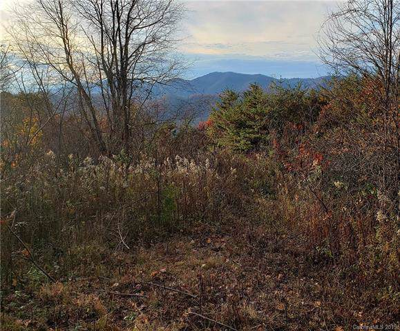 40 Hawks View Drive #26, Canton, NC 28716 (#3562619) :: Stephen Cooley Real Estate Group