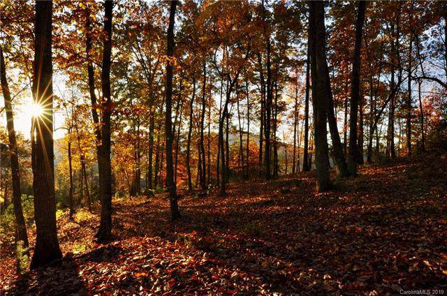 565 Walnut Valley Parkway #158, Arden, NC 28704 (#3564668) :: Rinehart Realty