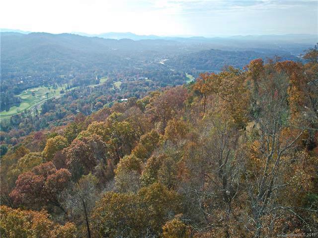 681 Altamont View, Asheville, NC 28804 (#3566823) :: The Elite Group