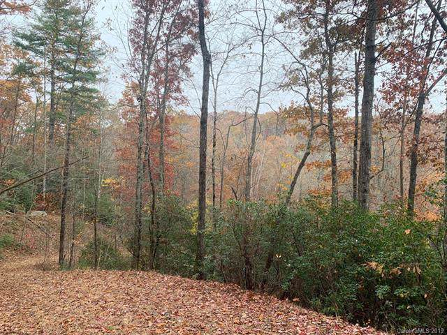 Lot 134 Green Hollow Lane, Brevard, NC 28712 (#3567472) :: Rinehart Realty