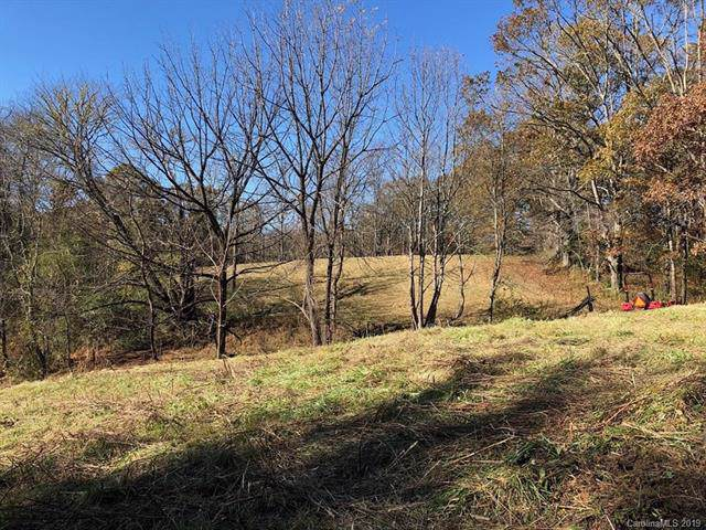 1895 Old Bryson City Road, Whittier, NC 28789 (#3567733) :: Stephen Cooley Real Estate Group
