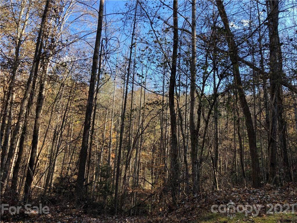 0000 High Rock Ridge - Photo 1