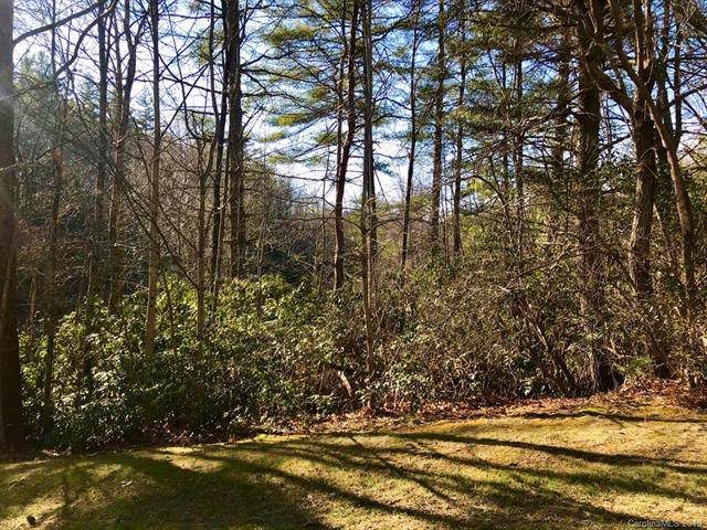 999999 Mountain Ivy Lane #355, Hendersonville, NC 33141 (#3575623) :: Caulder Realty and Land Co.