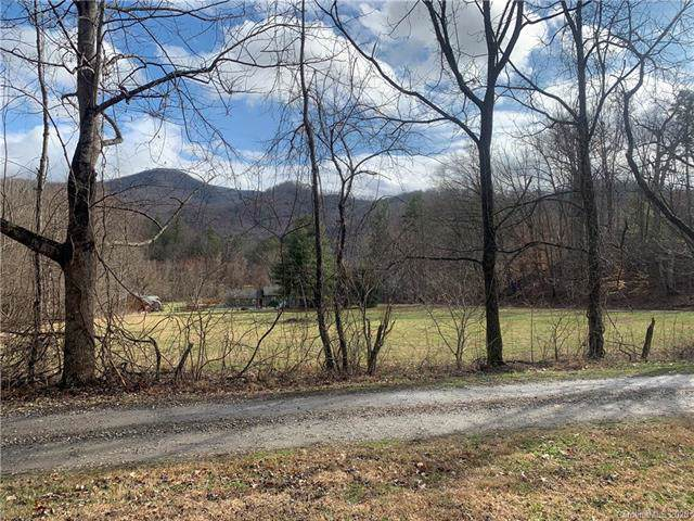9999 Lula Cove Road, Weaverville, NC 28787 (MLS #3582663) :: RE/MAX Journey