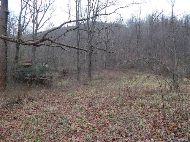 00 Hall Top Road, Waynesville, NC 28786 (#3586073) :: Mossy Oak Properties Land and Luxury