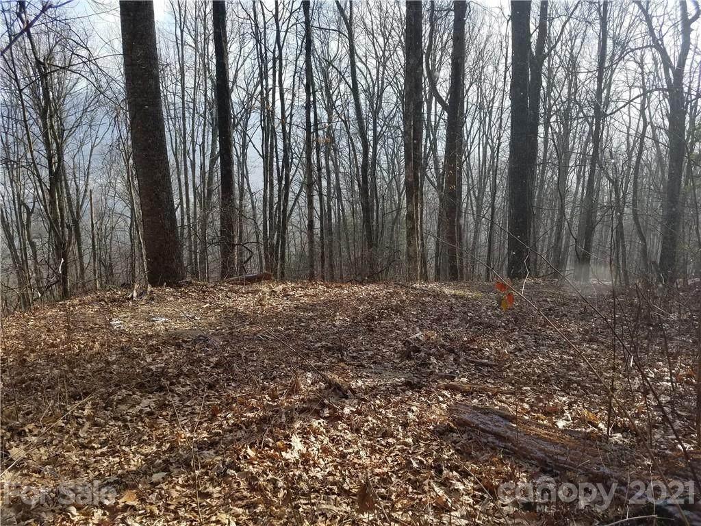 811 Dogwood Trail - Photo 1