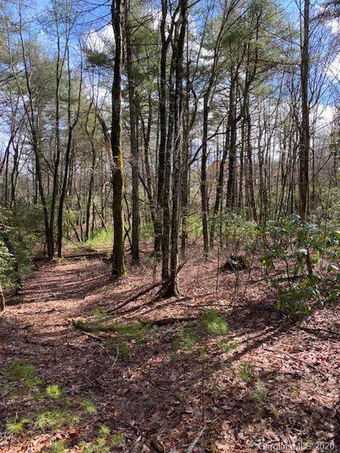 Lot 163A Eagle Lake Drive 163A, Brevard, NC 28712 (#3589434) :: The Mitchell Team