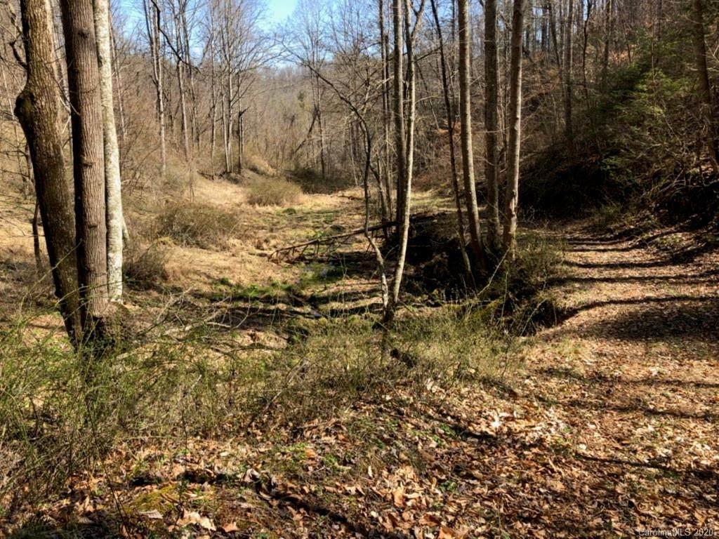 0 Whitson Branch Road - Photo 1