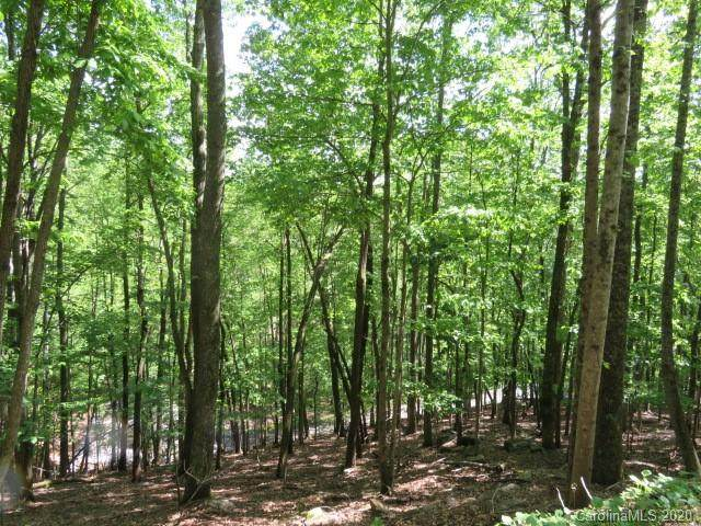 TBD Sugar Maple Drive #204, Mills River, NC 28759 (MLS #3596164) :: RE/MAX Journey