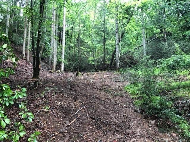 864 Deerlake Road, Brevard, NC 28712 (#3601410) :: Robert Greene Real Estate, Inc.