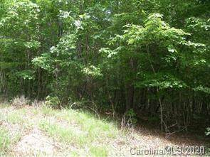 Lot 19 South Pointe Road, Mill Spring, NC 28756 (#3633260) :: Stephen Cooley Real Estate Group