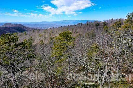 117 Sahalee Trail #2, Hendersonville, NC 28739 (#3635521) :: Willow Oak, REALTORS®