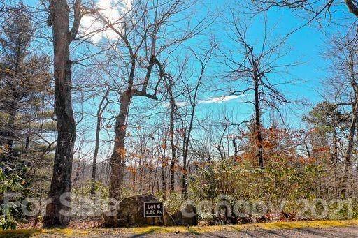 371 Sahalee Trail #6, Hendersonville, NC 28739 (#3635613) :: The Mitchell Team