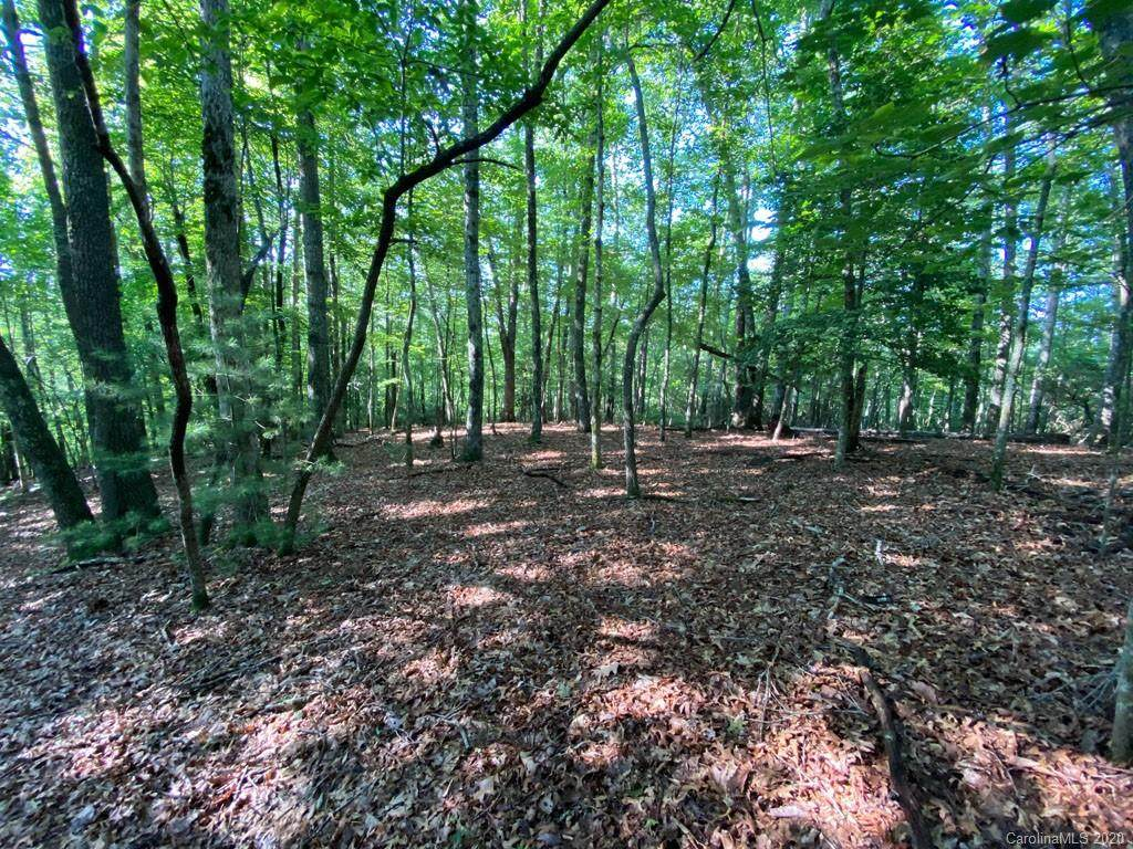 Lot 13 Cantrell Mountain Road - Photo 1