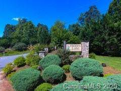 0000 Hidden Lake Parkway, Nebo, NC 28761 (#3639348) :: Ann Rudd Group