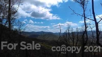 97 Sassafras Valley Road, Swannanoa, NC 28778 (#3648648) :: Cloninger Properties