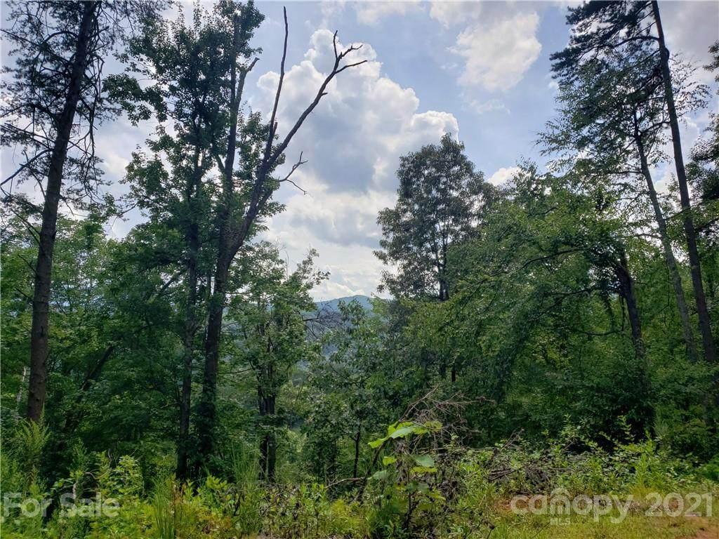 75 Lemon Creek Drive - Photo 1
