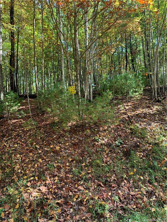 Lot 229 Deer Run #229, Purlear, NC 28665 (#3672533) :: Stephen Cooley Real Estate Group