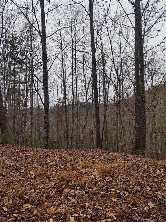 Lot 102 Staghorn Road #102, Purlear, NC 28665 (#3672541) :: Stephen Cooley Real Estate Group