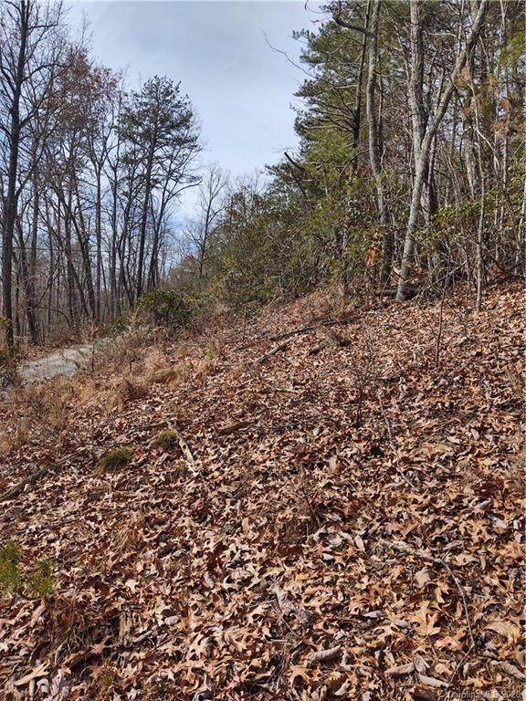 Lot #H-4 Platinum Road, Tuckasegee, NC 28783 (#3676058) :: High Performance Real Estate Advisors