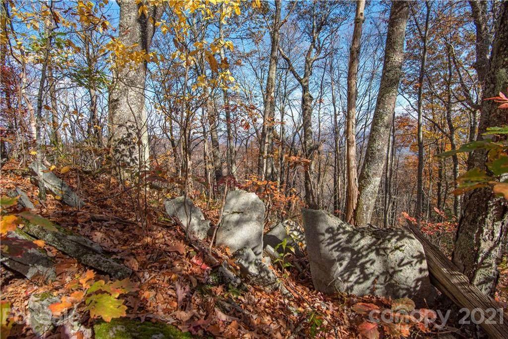 Tract 8 Sigogglin Trail - Photo 1