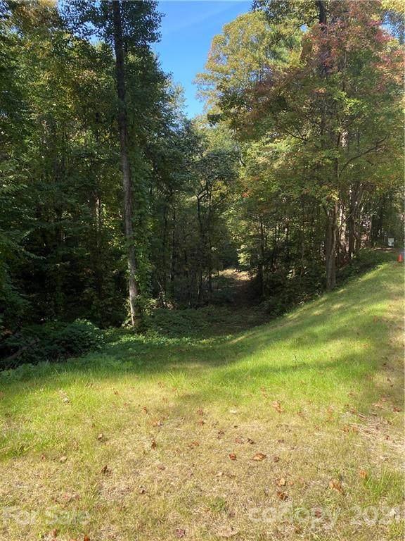 15 Beech Tree Lane, Asheville, NC 28804 (#3678149) :: BluAxis Realty