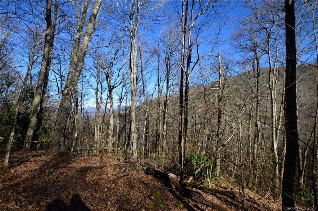 51 Gata Trail - Photo 1