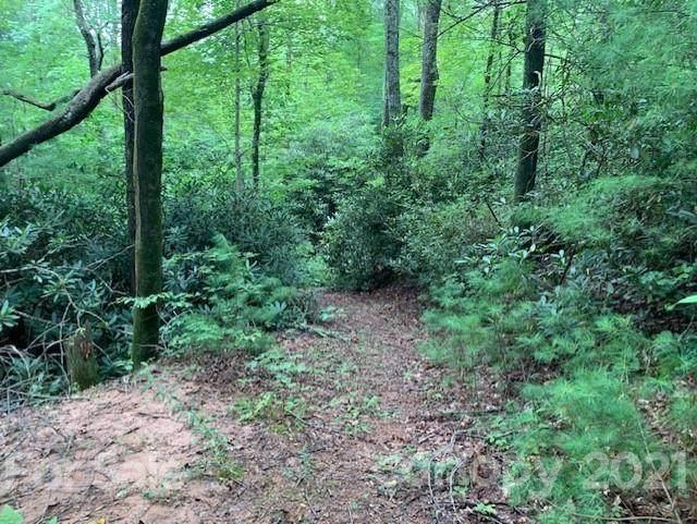 99 Cedar Creek Road #10, Saluda, NC 28773 (#3693709) :: Carolina Real Estate Experts