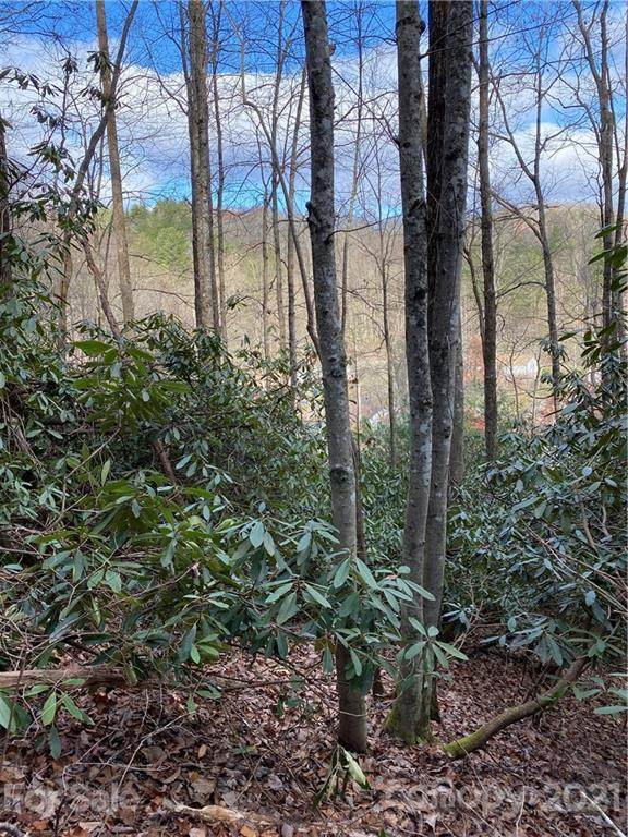 Lot 50 & 51 Wood Duck Court 50 & 51, Brevard, NC 28712 (#3693879) :: Stephen Cooley Real Estate Group
