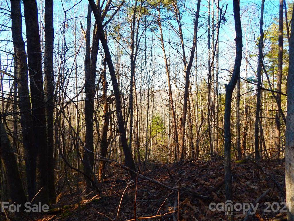 00 Hilltop View Drive - Photo 1