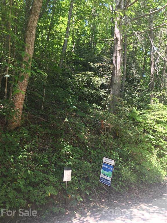 Lot 25 Rush Creek Road, Black Mountain, NC 28711 (#3714743) :: Todd Lemoine Team
