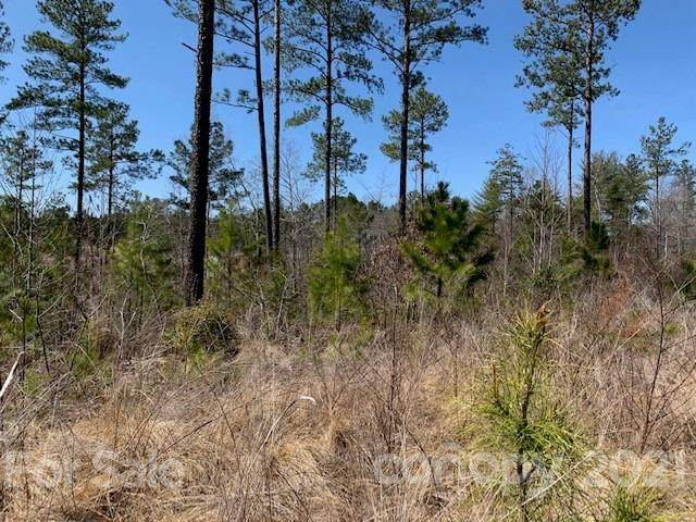 00 Waters Edge Drive #98, Granite Falls, NC 28630 (#3722949) :: Caulder Realty and Land Co.