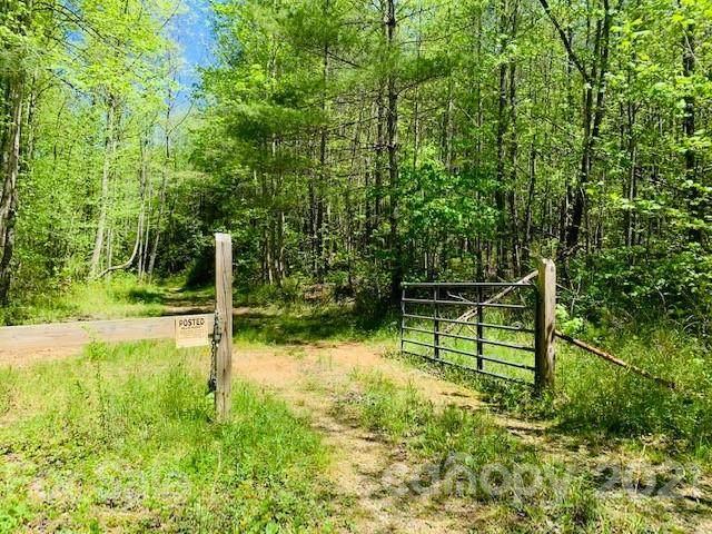 1438 Brown Mountain Beach Road, Morganton, NC 28655 (#3733205) :: Exit Realty Vistas