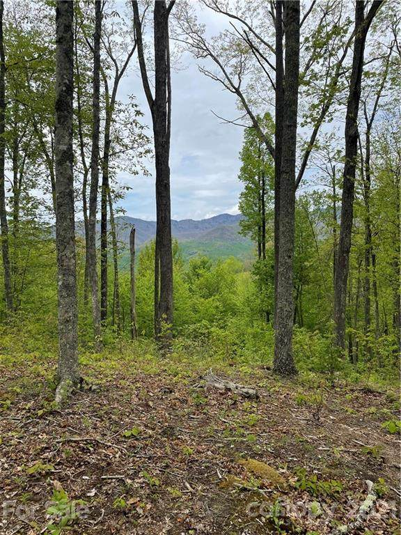 235 Down The Hill Road #235, Sylva, NC 28779 (#3737966) :: Odell Realty