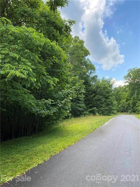 TBD Newcastle Road, Brevard, NC 28712 (#3751362) :: Lake Wylie Realty