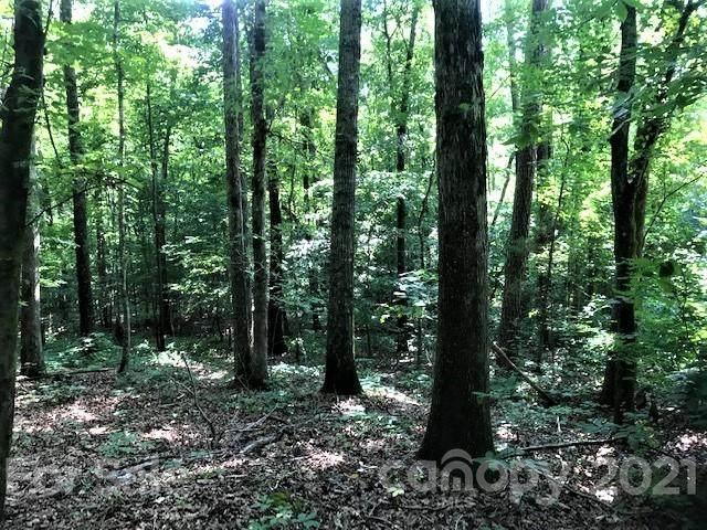 000 Starnes Cemetery Road, Monroe, NC 28112 (#3753106) :: Scarlett Property Group