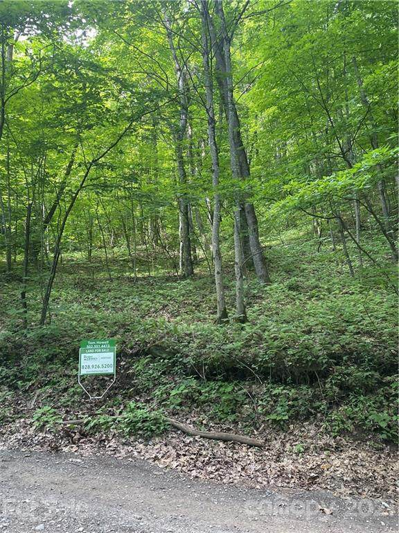 00 Hidden Cove Road 37-5, Maggie Valley, NC 28751 (#3753126) :: The Mitchell Team