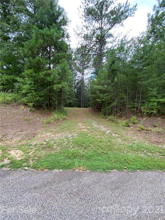 LOT 20 River Park Lane, Mill Spring, NC 28756 (#3778071) :: LePage Johnson Realty Group, LLC