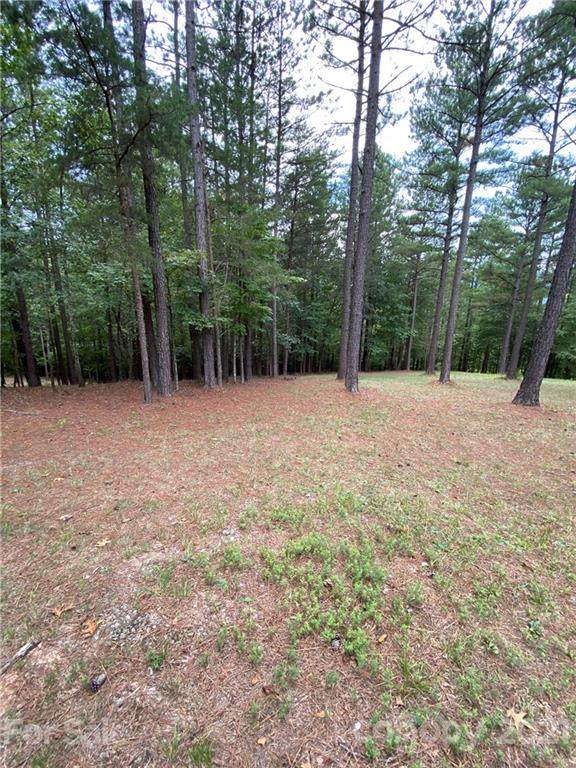 LOT 19 River Park Lane, Mill Spring, NC 28756 (#3778110) :: LePage Johnson Realty Group, LLC
