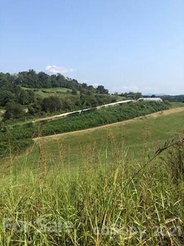 229 Westridge Farm Road #25, Asheville, NC 28804 (#3785317) :: Puma & Associates Realty Inc.